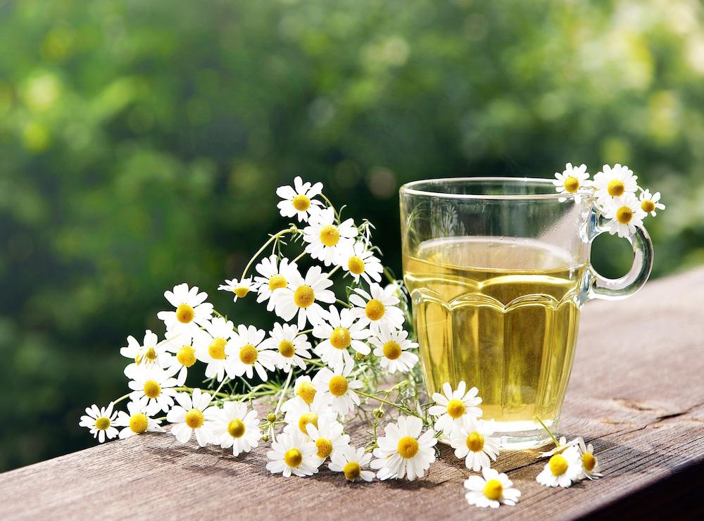 Чаи от простуды лучшие рецепты