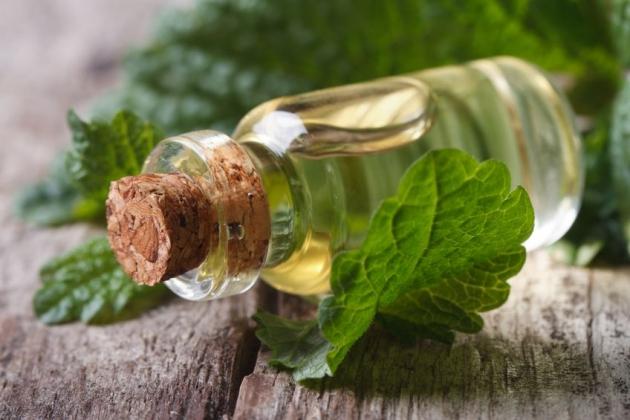 Применение масла чайного дерева 101 рецепт
