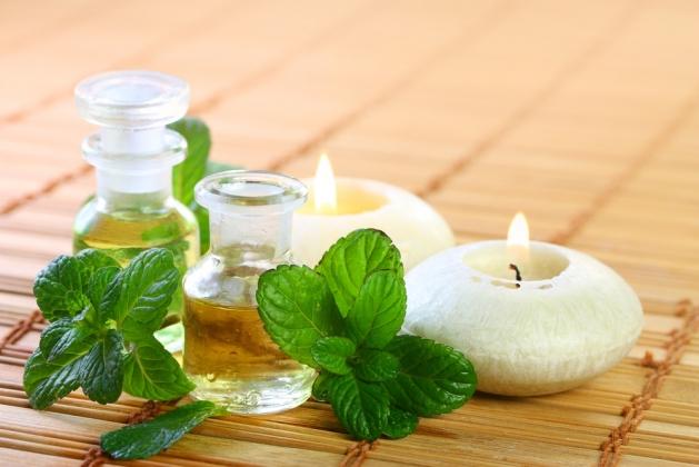 Польза и применение масла мяты