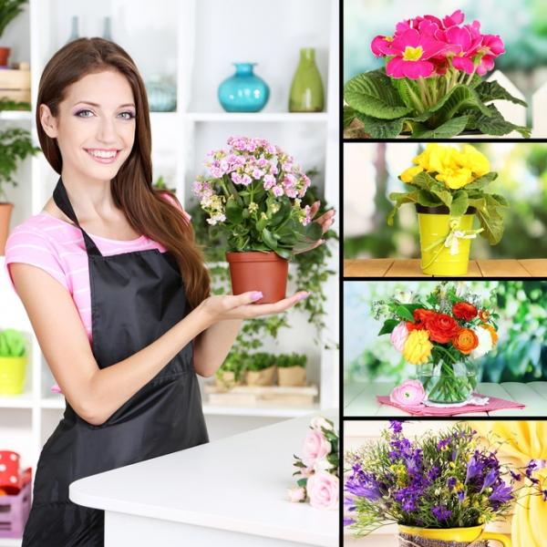 Цветы для счастья в доме