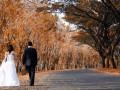 Ситцевая свадьба или первая годовщина свадьбы