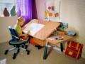 Правильная организация рабочего места школьника