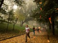 Осенняя пробежка. Польза пробежек в осенний период