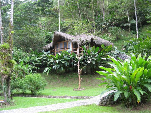 Свадебная церемония 2012 в джунглях Коста-Рики