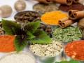 Специи, пряности и свежая зелень — неоценимая польза для здоровья