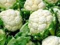 Что приготовить из цветной капусты