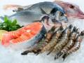 Сорта рыб — калорийность и полезные свойства