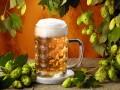 Рецепты на основе пива — готовим для мужчин