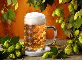 Рецепты на основе пива