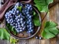 Что приготовить из винограда: рецепты