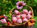 Розовый малиновый зефир