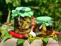 Острые баклажаны со сладким перцем на зиму